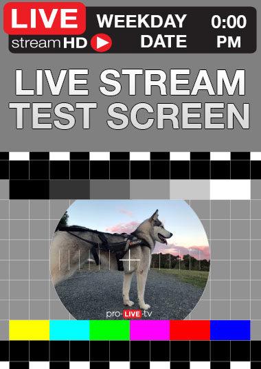 pro-live tv live stream test